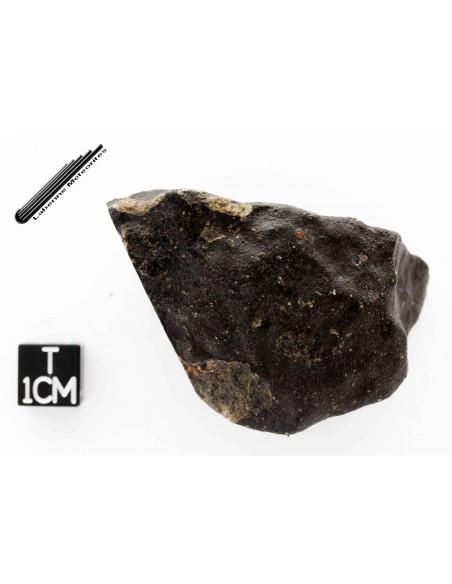 Météorite -  Eucrite -- 66,15 g // Groupe H.E.D