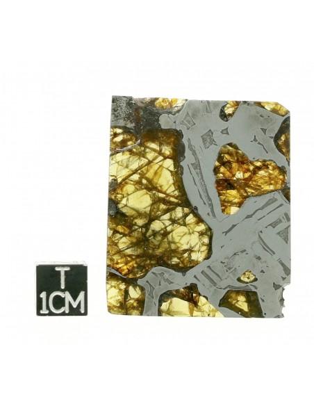 SEYMCHAN Pallasite 19,70g qualité AAA +