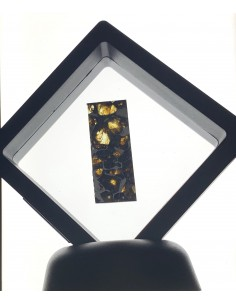 SEYMCHAN Pallasite - 130,1 g -