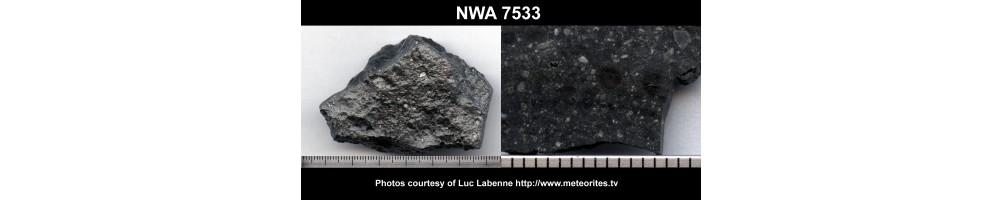 NWA 7533 Black Beauty, météorite martienne